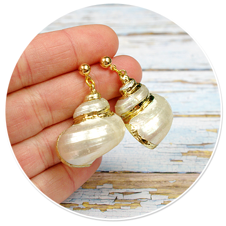 plug-in earrings shell (sailor)
