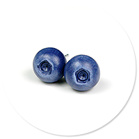 plug-in earrings blueberries