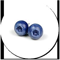 kolczyki wtykane jagody